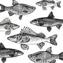 Serviette en papier - GRAPHIC FISHES - 33x33cm