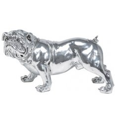 Sculpture - Silver bulldog - 22 cm